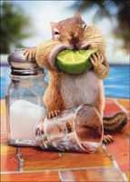 Chipmunk Lime Mouth Stand Out (1 card/1 envelope) - Birthday Card  INSIDE: See you under the table! Happy Birthday