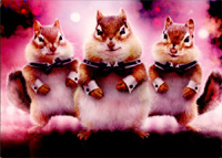 Chipmunk Dancers Stand Out (1 card/1 envelope) Avanti Funny Pop Up Birthday Card