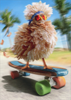 Fancy Chicken Skateboarding (1 card/1 envelope) Avanti Funny Birthday Card