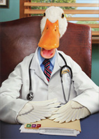 Duck Doctor (1 card/1 envelope) Avanti Funny Birthday Card