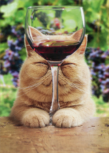Cat With Glass Of Red Wine Funny Birthday Card Greeting Card By