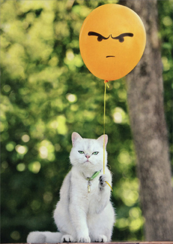 Cat With Angry Balloon Funny Birthday Card