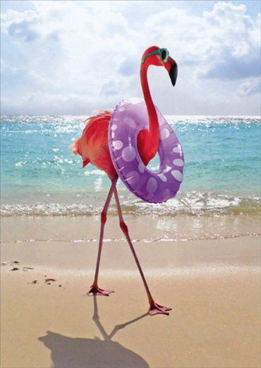 flamingo with swim ring funny feminine birthday card by