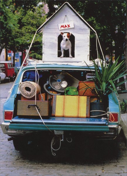 Dog House on Car (1 card/1 envelope) Funny Goodbye Card - FRONT: Max and his dog house are on top of a car  INSIDE: Thing's won't be the same without you.