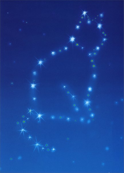 Cat Constellation (1 card/1 envelope) - Pet Sympathy Card - FRONT: No Text  INSIDE: Heaven is a little brighter..I'm really sorry for your loss