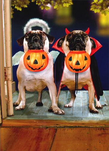 Two Pugs in Costume (1 card/1 envelope) - Halloween Card - FRONT: No Text  INSIDE: Double Boo!  Happy Halloween