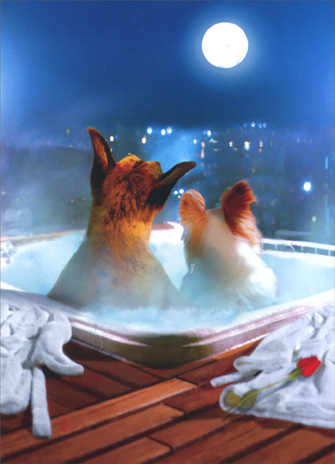 Hot Tub Dogs (1 card/1 envelope) Valentine's Day Card - FRONT: No Text  INSIDE: Happy Valentine's Day, hot stuff!