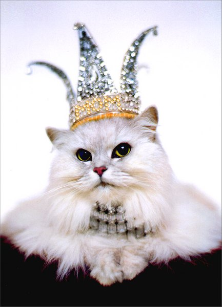 Cat in Crown & Jewels (1 card/1 envelope) Mother's Day Card - FRONT: No Text  INSIDE: Everyday you sparkle, but today you rule!  Happy Mother's Day
