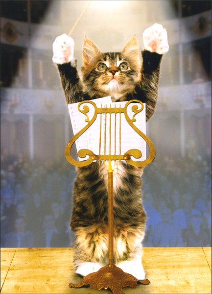 Kitty Konductor (1 card/1 envelope) Cat Congratulations Card - FRONT: No Text  INSIDE: You deserve a standing ovation! Congratulations