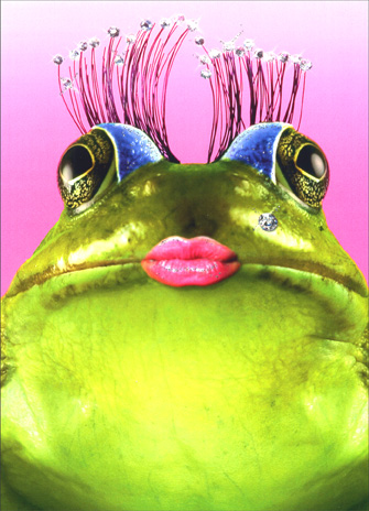 Divine Frog (1 card/1 envelope) Birthday Card - FRONT: No Text  INSIDE: Hope it's simply divine!  Happy Birthday