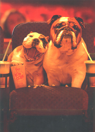 Dogs In Theater (1 card/1 envelope) Bulldog Valentine's Day Card - FRONT: No Text  INSIDE: Here's to happily every after!  Happy Valentine's Day