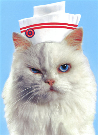 Nurse Cat (1 card/1 envelope) Funny Get Well Card - FRONT: No Text  INSIDE: You better get better!