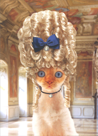 Cat in Old Fashioned Wig (1 card/1 envelope) Birthday Card - FRONT: No Text  INSIDE: You don't look a day over..  Fabulous!  Happy Birthday