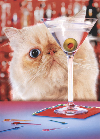 Martini Cat (1 card/1 envelope) Birthday Card - FRONT: No Text  INSIDE: You're just a 'tini bit older! Happy Birthday