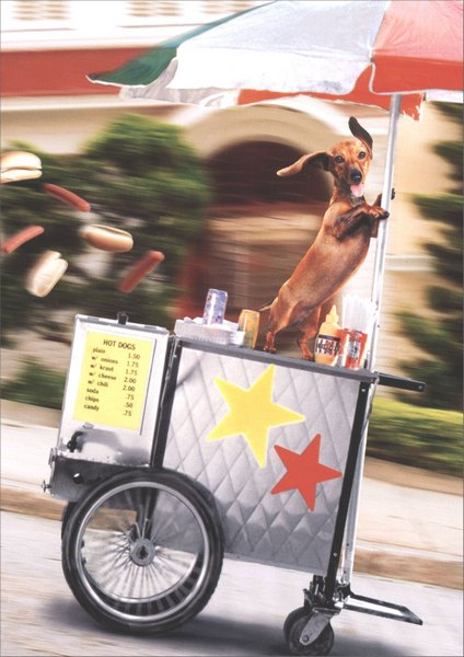 Runaway Hot Dog Cart (1 card/1 envelope) Funny Avanti Congratulations Card - FRONT: No Text  INSIDE: What's hot and on a roll? You are! Congratulations