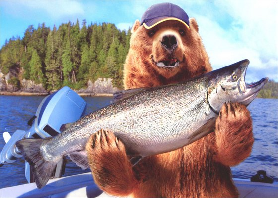 Grizzly bear with big fish father 39 s day card by avanti press for Fishing in big bear