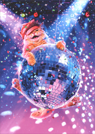 Cat Swinging On Disco Ball (1 card/1 envelope) Avanti Funny Birthday Card - FRONT: No Text  INSIDE: Let's get this party started! Happy Birthday