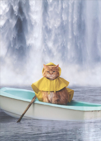 Cat Under Falls (1 card/1 envelope) Avanti Just For Fun Card - FRONT: No Text  INSIDE: On the bright side, you still have your paddle!