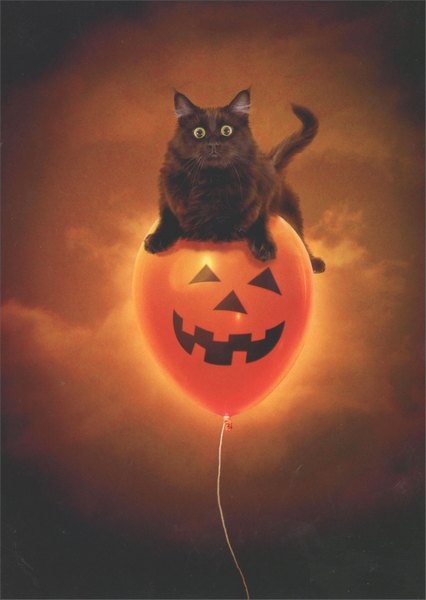 Cat On Balloon (1 card/1 envelope) Avanti Press Halloween Card - FRONT: No Text  INSIDE: Hi! Happy Halloween