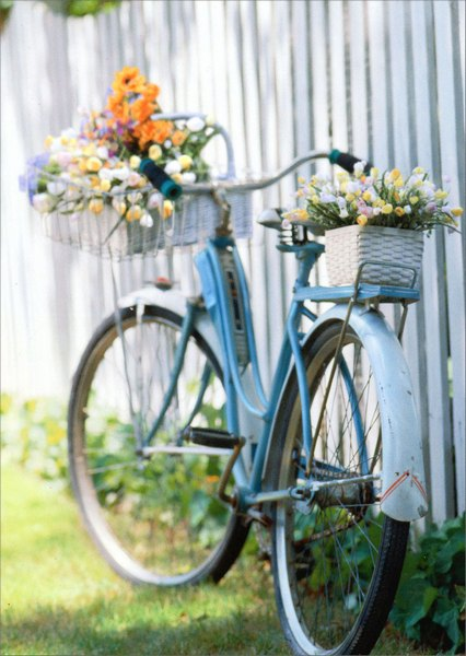 Bike With Flowers (1 card/1 envelope) Avanti Blank Card - FRONT: No Text  INSIDE: Blank Inside
