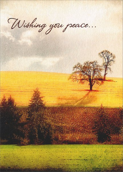 Landscape Horizon (1 card/1 envelope) Avanti A*Press Sympathy Card - FRONT: Wishing you peace..  INSIDE: May the memories of your loved one give you comfort and strength.