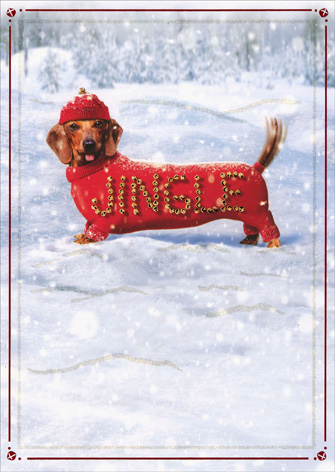 Dachshund With Jingle Sweater - Premium (1 card/1 envelope) Avanti Premium Christmas Card - FRONT: JINGLE  INSIDE: Make a joyful noise!  Happy Holidays