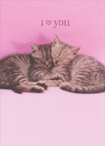 Two Kittens Snuggling (1 card/1 envelope) Avanti Funny Cat Valentine's Day Card - FRONT: I (heart icon) you  INSIDE: Happy Valentine's Day!
