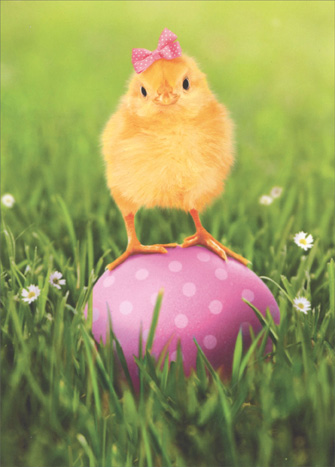Chick Atop Egg (1 card/1 envelope) - Easter Card  INSIDE: Enjoy the tweets! Happy Easter