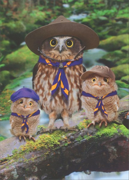 Owl Scout Leader (1 card/1 envelope) Avanti Funny Father's Day Card  INSIDE: We'd be lost without you! Happy Father's Day