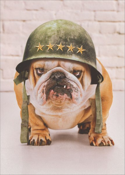 General Dad (1 card/1 envelope) Avanti Funny Father's Day Card  INSIDE: Happy Father's Day … From the troops!