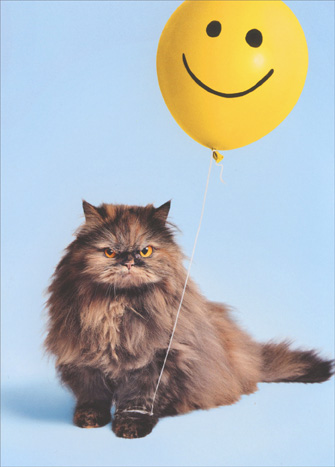 Cranky Cat, Smiley Balloon (1 card/1 envelope) Avanti Funny Just for Fun Card  INSIDE: If one more person tells me to Have A Nice Day …