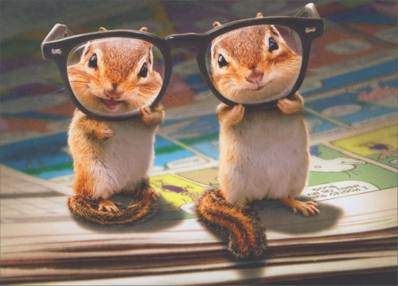 Chipmunks With Thick Glasses (1 card/1 envelope) Avanti Funny Birthday Card  INSIDE: Funny� you don't look a year older! Happy Birthday