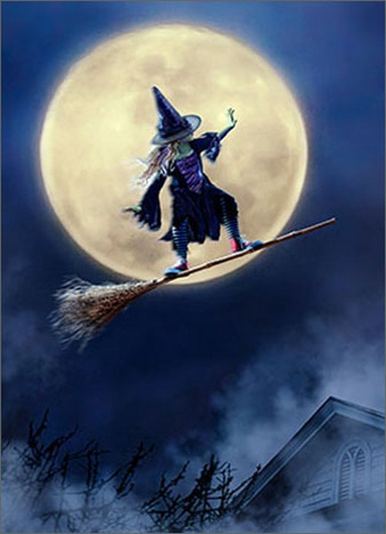 Girl Rides Broom As Skateboard (1 card/1 envelope) Avanti Funny Juvenile Halloween Card  INSIDE: Hope it's totally wicked! Happy Halloween