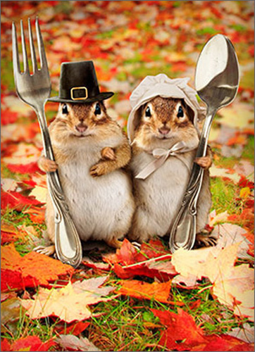 Chipmunk Couple (1 card/1 envelope) - Thanksgiving Card  INSIDE: From our colony to yours � Happy Thanksgiving!