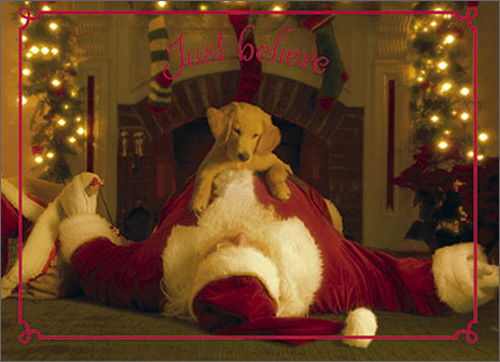 Pup Jumps On Santa - Premium Version (1 card/1 envelope) - Christmas Card - FRONT: Just believe  INSIDE: Merry Christmas!