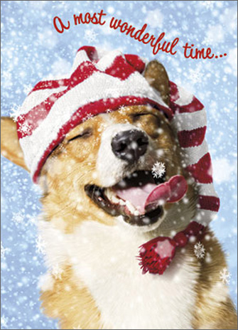 Dog Catching Snowflakes (1 card/1 envelope) - Christmas Card - FRONT: A most wonderful time�  INSIDE: �of the year! Merry Christmas