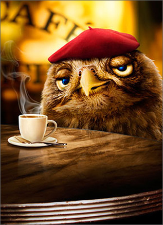 Espresso Owl (1 card/1 envelope) Avanti Funny Just for Fun Card  INSIDE: I plan to seize the day� tomorrow!