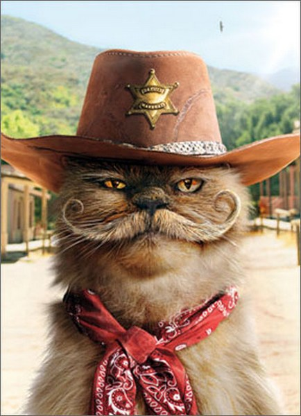 Sheriff Cat with Mustache (1 card/1 envelope) Avanti Stand Out Pop Up Birthday Card  INSIDE: Happy Birthday �to one of the good guys!