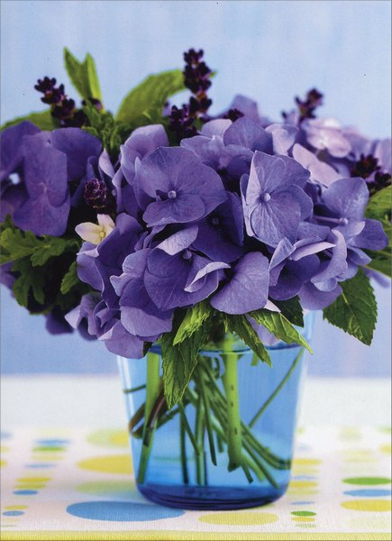 Purple Hydrangeas In Blue Jar (1 card/1 envelope) Avanti Blank Card