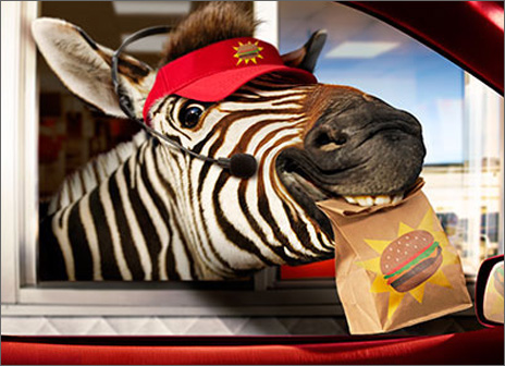 Zebra Fast Food Window (1 card/1 envelope) - Birthday Card  INSIDE: Another one in the bag! Happy Birthday