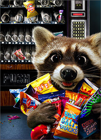Raccoon Vending Machine (1 card/1 envelope) Avanti Funny Birthday Card  INSIDE: Hope you hit the snack pot! Happy Birthday