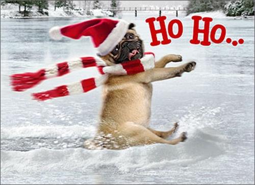 Dog Slides Across Frozen Pond Premium (1 card/1 envelope) - Christmas Card - FRONT: Ho Ho�  INSIDE: �Whoa! Merry Christmas