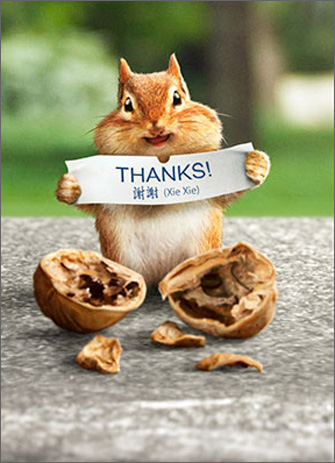Chipmunk Reads Fortune (1 card/1 envelope) Avanti Thank You Card - FRONT: THANKS!  INSIDE: Good fortune is a friend like you!
