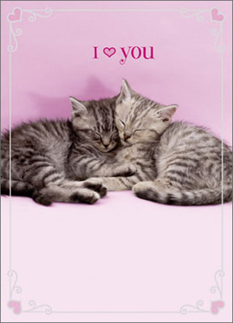 Two Kittens Snuggling (1 card/1 envelope) Avanti A*Press Valentine's Day Card - FRONT: I (HEART) YOU  INSIDE: Happy Valentine's Day!