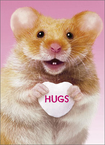 Hug Me Hamster (1 card/1 envelope) Avanti A*Press Valentine's Day Card - FRONT: HUGS  INSIDE: …and kisses! Happy Valentine's Day