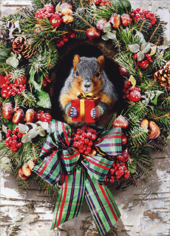 Squirrel with Gift (1 card & 1 envelope) Avanti Christmas Card - FRONT: No Text  INSIDE: Merry Christmas ..from the nuthouse!