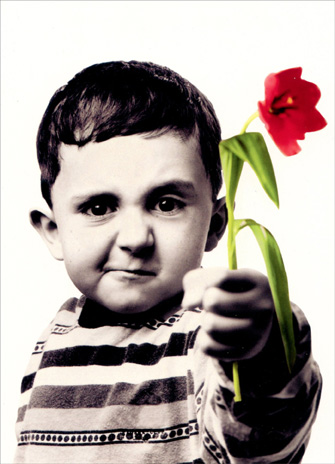 Boy with Flower (1 card/1 envelope) - Love Card - FRONT: No text  INSIDE: I really, really, really like you.