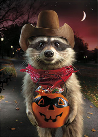 Raccoon Cowboy Standout (1 card/1 envelope) - Halloween Card  INSIDE: Just hand it over, nice and slow-like! Happy Halloween
