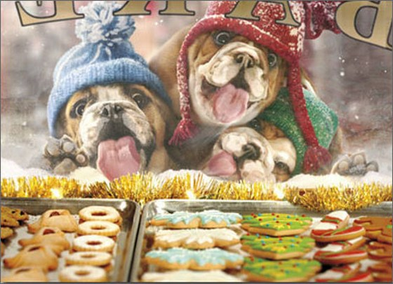 3 Christmas Dogs At Bakery Window Stand Out Pop-Up Bulldog