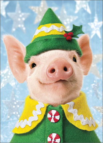 Pig Elf Stand Out (1 card/1 envelope) Avanti Pop Up Christmas Card  INSIDE: Wishing you the Merriest little Christmas ever!  JOY